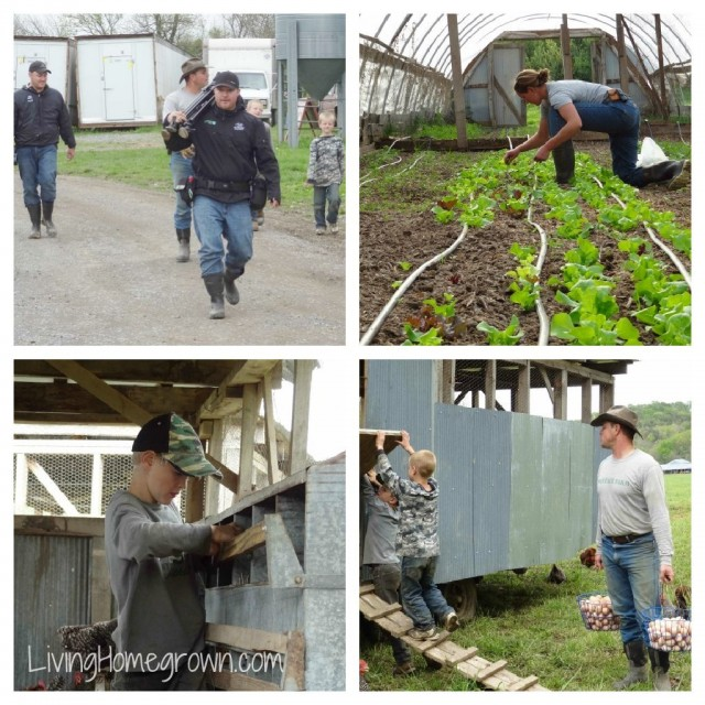 Polyface Farm Filming
