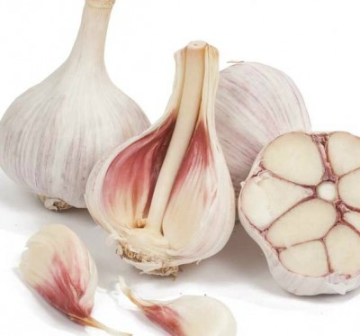 German Red Garlic - Hardneck