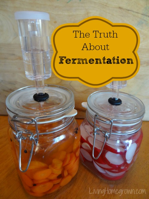 The Truth About Fermentation and Why You Should Do It