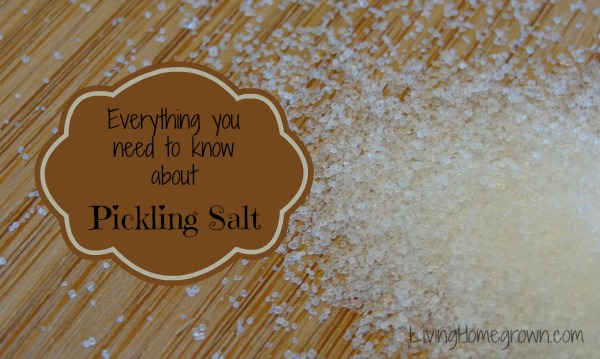how to use pickling salt