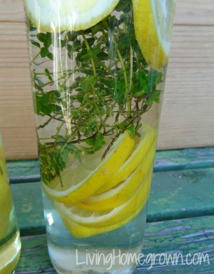 Vodka infused with thyme