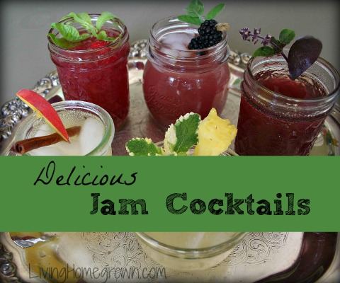 How to Make Jam Cocktails from LivingHomegrown