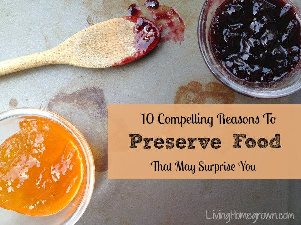 10 Compelling Reasons to Preserve Food - LivingHomegrown.com