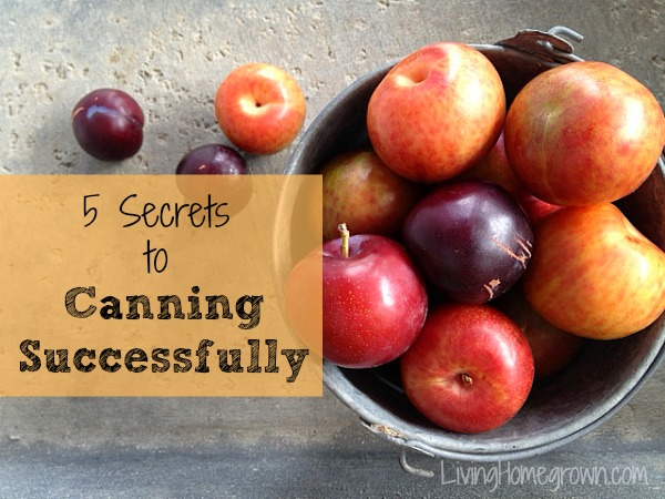 5 Secrets to Canning Successfully - LivingHomegrown