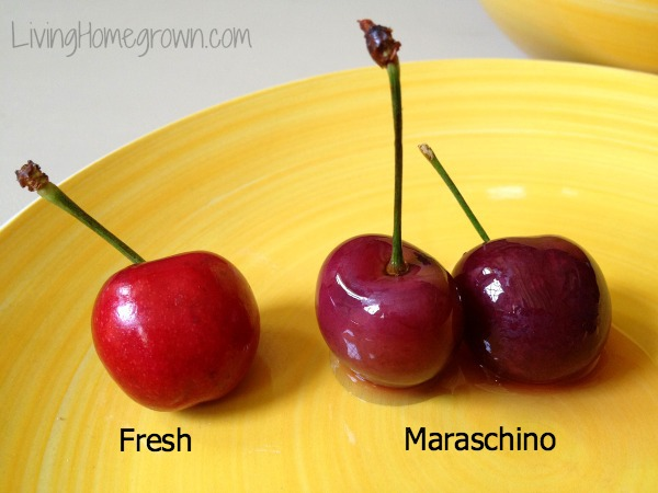 How to make real Maraschino Cherries