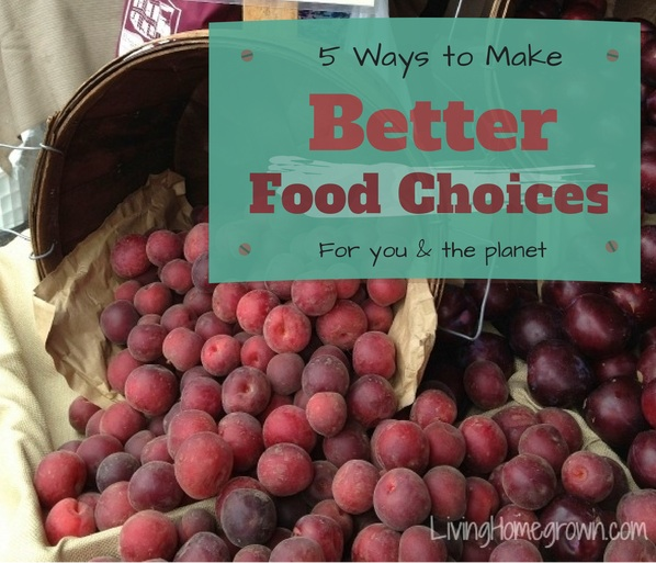 5 Ways to Make Better Food Choices - LivingHomegrown.com