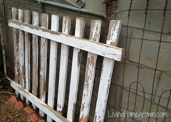How to find unusual trellises for the garden - LivingHomegrown.com