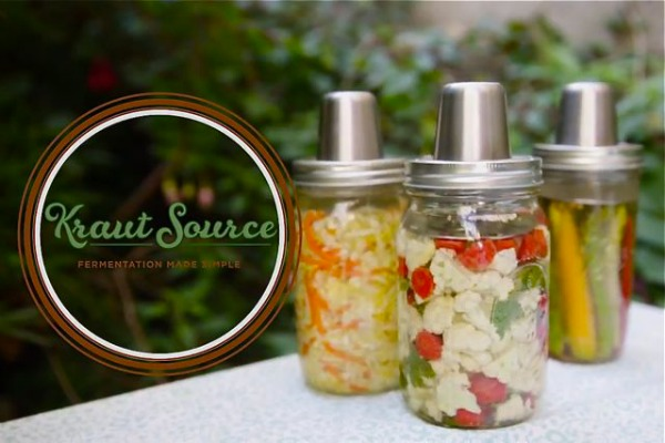 Kraut Source Fermentation Tool - LivingHomegrown.com