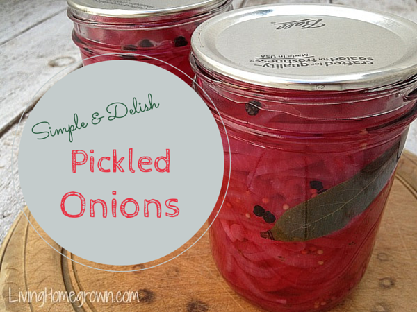 Easy Pickled Onion Recipe - LivingHomegrown.com