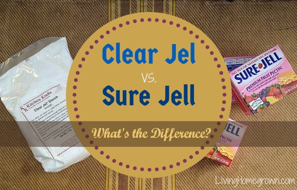 Difference between Clear Jel & Sure Jell - LivingHomegrown.com