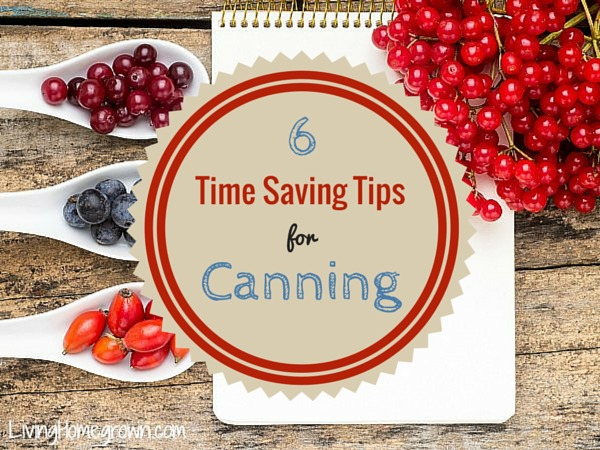 Saving Time While Canning - LivingHomegrown.com