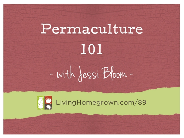 Permaculture 101 with Jessi Bloom at LivingHomegrown.com