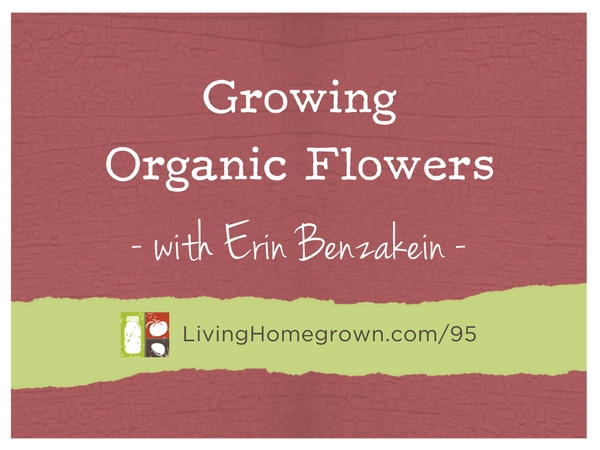 Growing Organic Flowers with Erin Benzakein at LivingHomegrown.com
