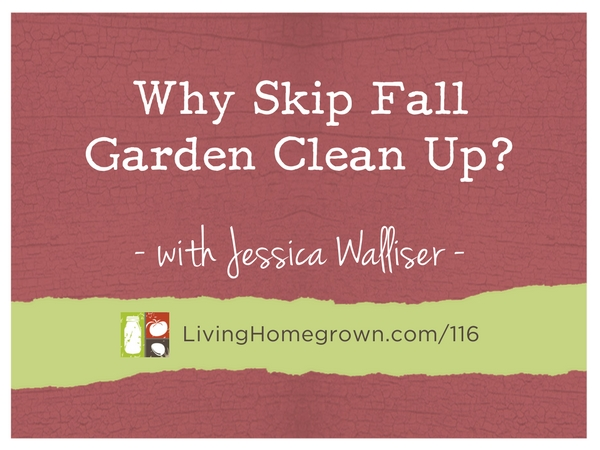 Why Skip Fall Garden Clean Up with Jessica Walliser at LivingHomegrown.com