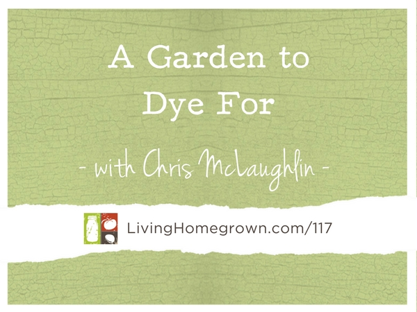 A Garden to Dye For with Chris McLaughlin at LivingHomegrown.com