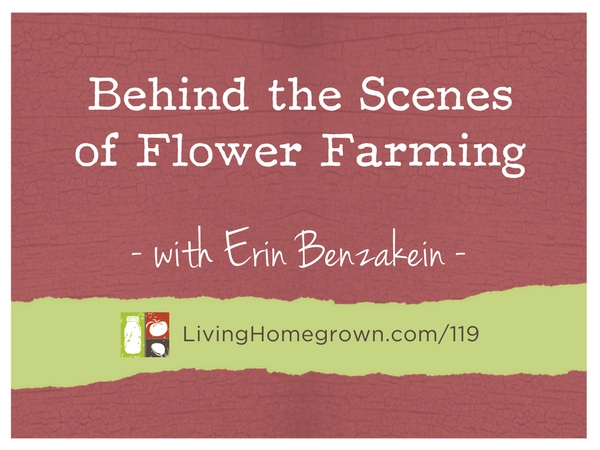Behind the Scenes of Flower Farming with Erin Benzakein at LivingHomegrown.com